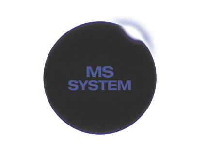 MS System