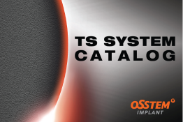 TS System