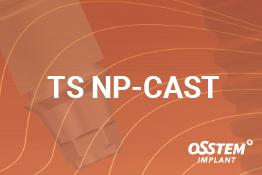 TS Np-Cast абатмент