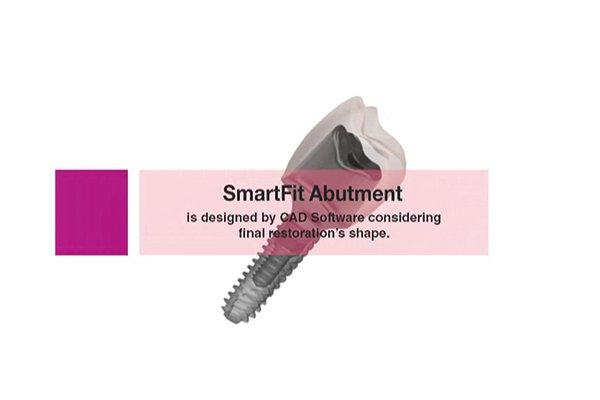 Osstem Smartfit Abutment CAD CAM